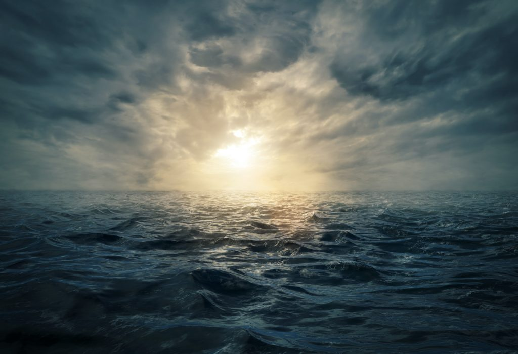 Hjernerystelse - et hav af misinformation